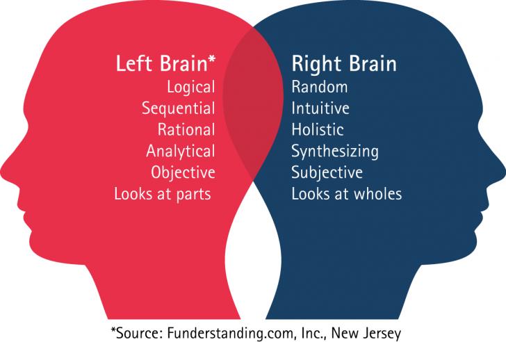 Caractéristiques du cerveau droit