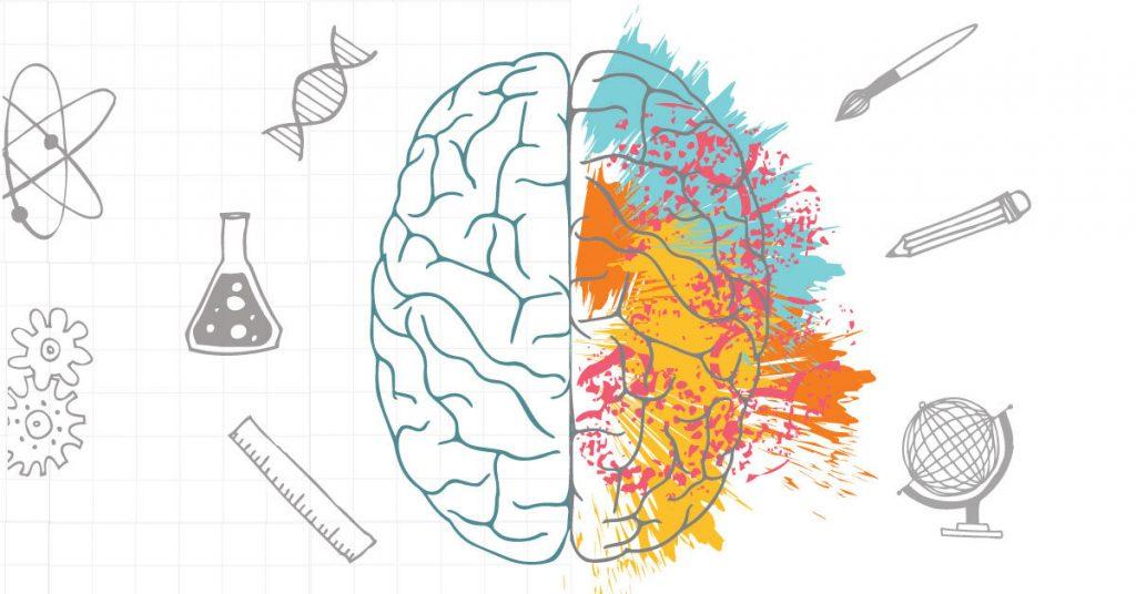 Caractéristiques du cerveau gauche
