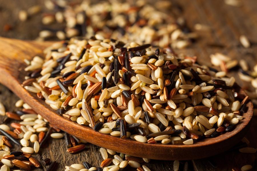 Riz sauvage nutritif : Nourriture des autochtones riches en nutriments